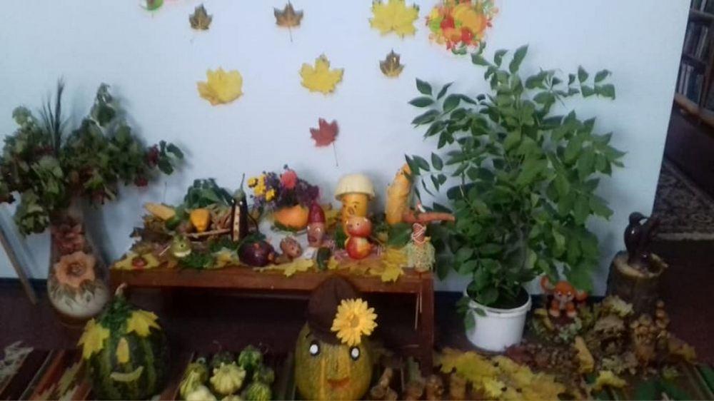 Виставка-інсталяція «Красуня осінь» в книгозбірні