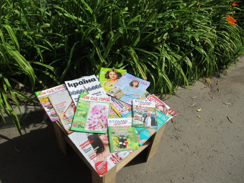 Прес  огляд «Літо на журнальній галявині» «Бібліотека під відкритим небом»